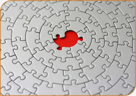 The last jigsaw piece?